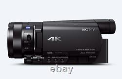 Sony Handycam (ax100 4k)